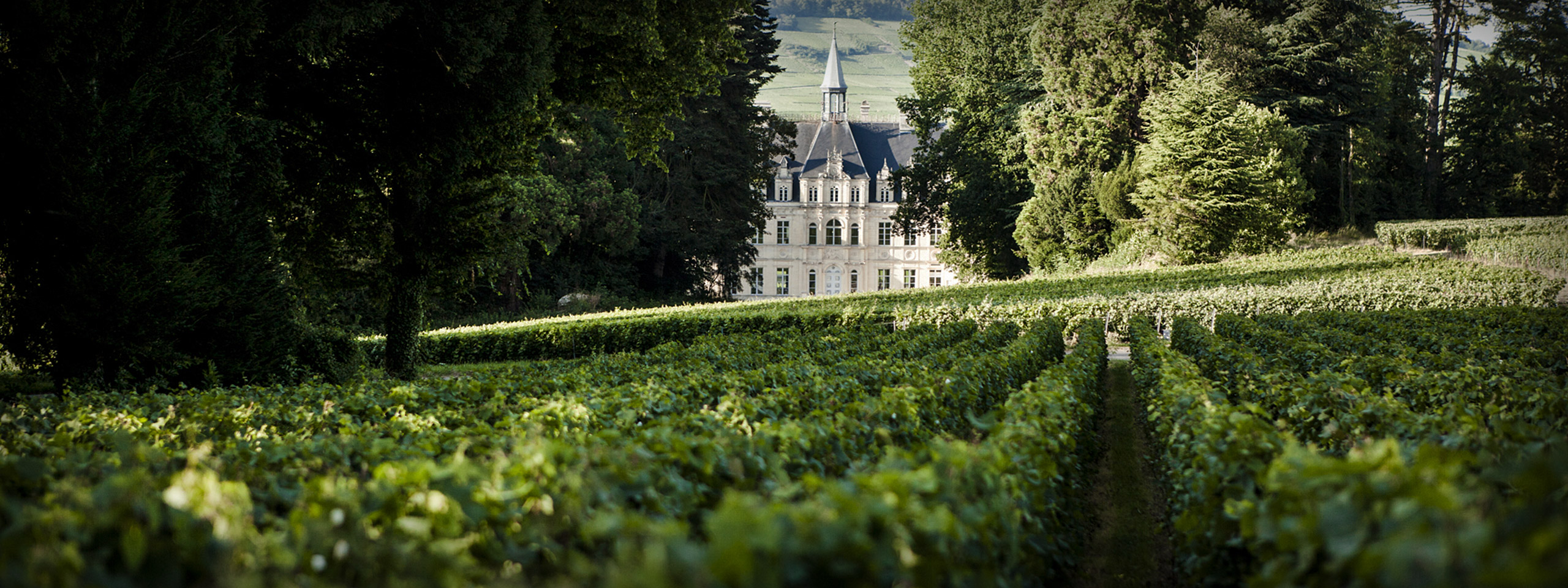 Château au cœur de la vallée de la Marne
